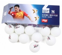 М'ячі для настільного тенісу DHS 40+ ITTF (10 шт., Білий)