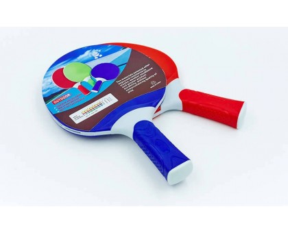 Ракетки для настольного тенниса Giant Dragon OUTDOOR MT-5684