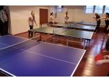 Тенісні столи для закритих приміщень (INDOOR)
