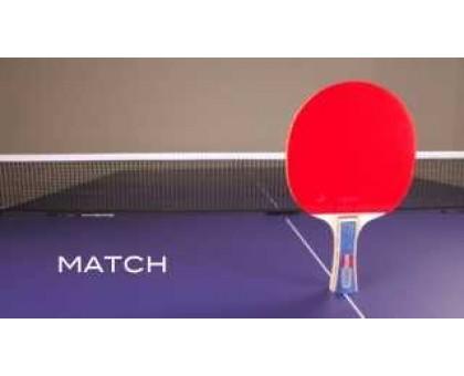 Ракетка для настільного тенісу Joola Match